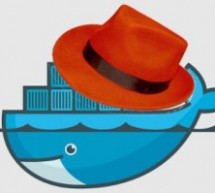 Linux 虛擬化,Red Hat Linux 7 新增 Linux Container