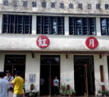 【南投】日月老茶廠,下午茶的好地方